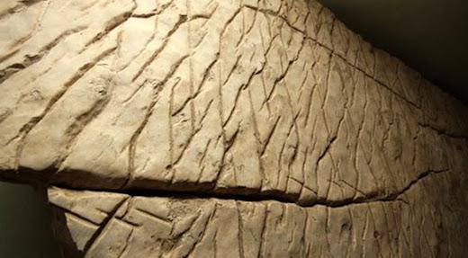 Esta roca podría ser un mapa tridimensional