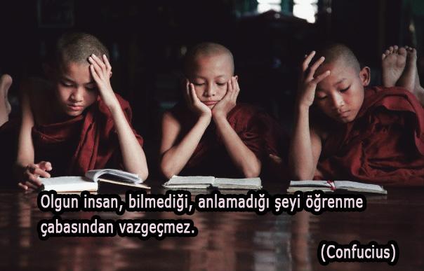 öğrenme ile ilgili düşünürlerin söylediği güzel sözler
