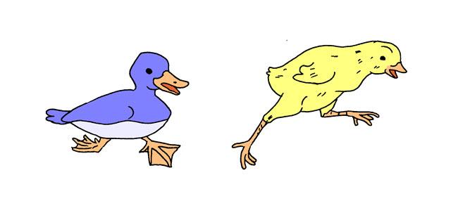 Itik dan Bebek
