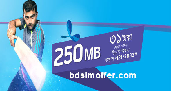 GP 250 MB Internet at 31Tk