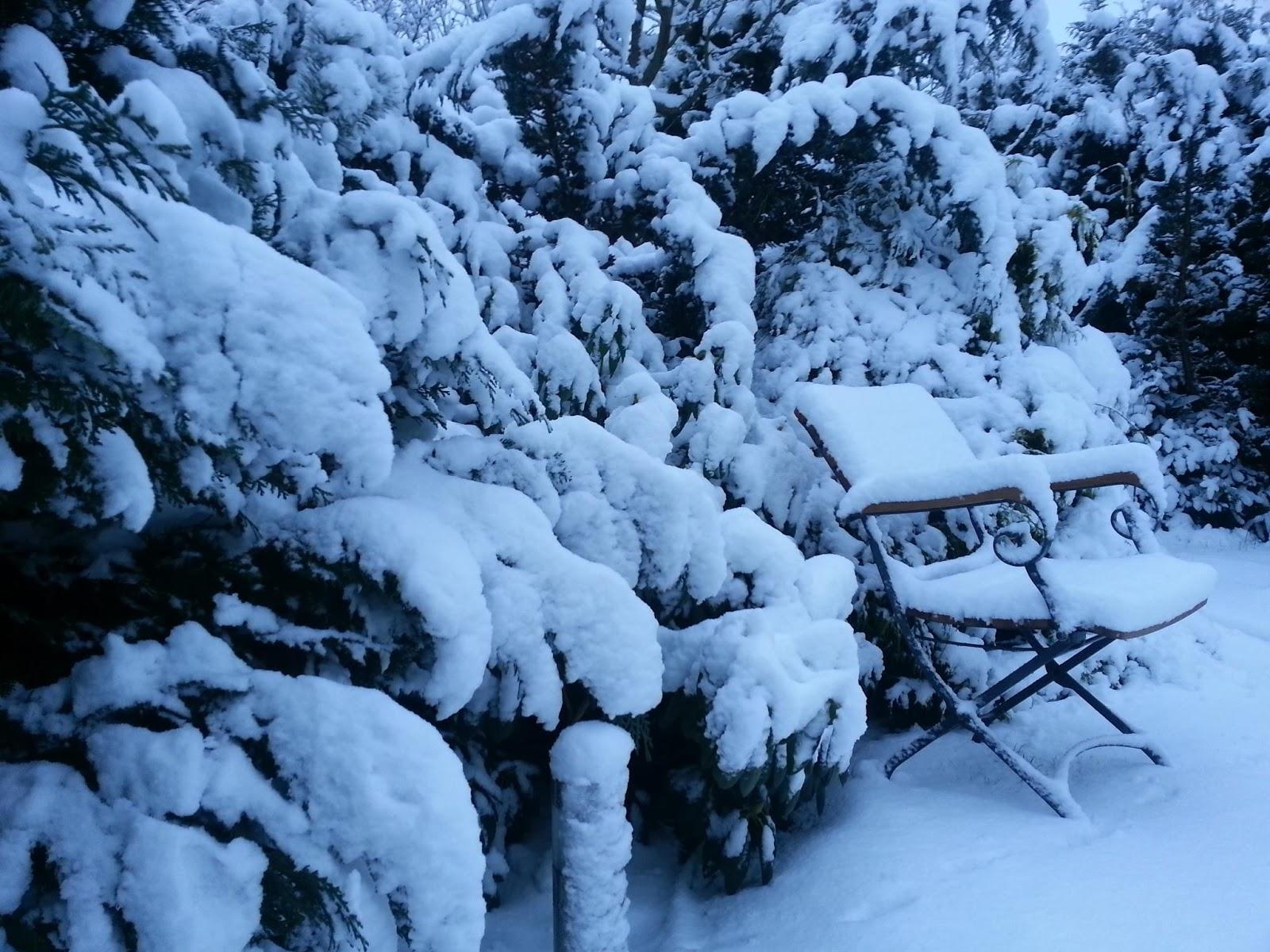 Guten Morgen Der Winter Ist Wieder Da