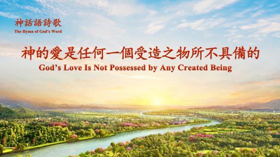 神的愛——全能神教會影視圖片