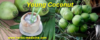 Benefit Coconut Water for Beauty tips