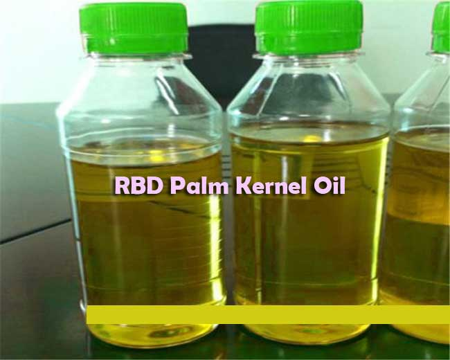 rbd palm kernel oil cif rotterdam price