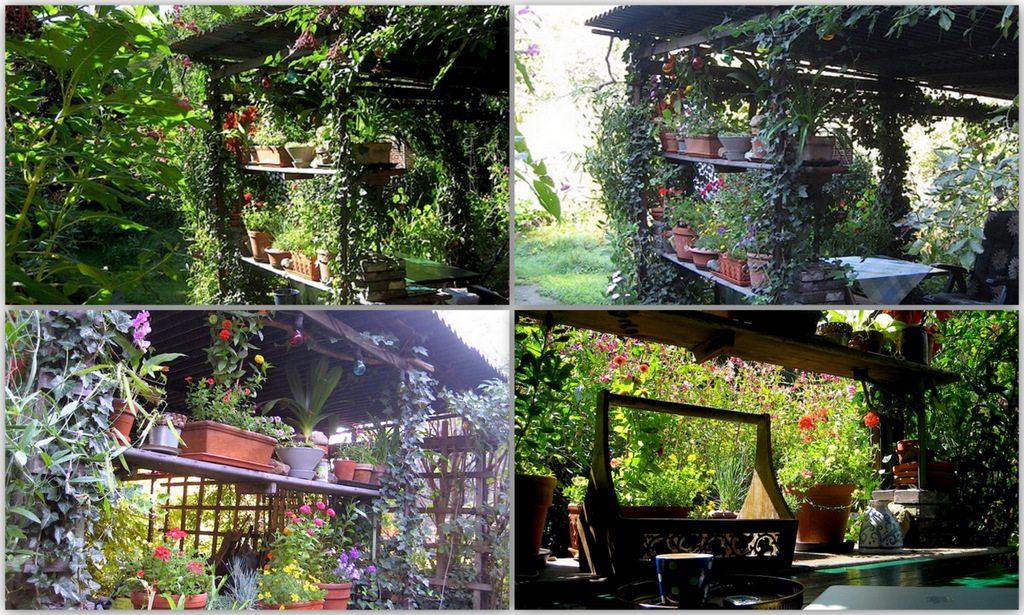 Frisch Günstig Gärtnern Design