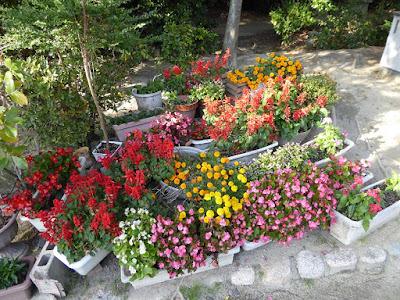 交野天神社 神社公園 花壇