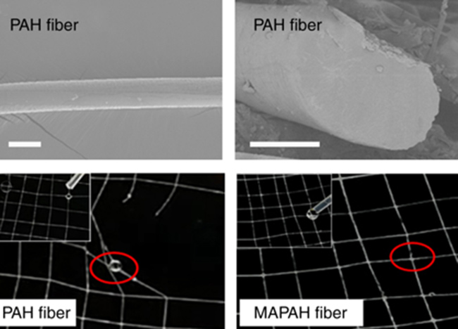 Penelitian Bioinspired Ultra-stretchable and Anti-freezing Conductive Hydrogel Fibers with Ordered and Reversible Polymer Chain Alignment