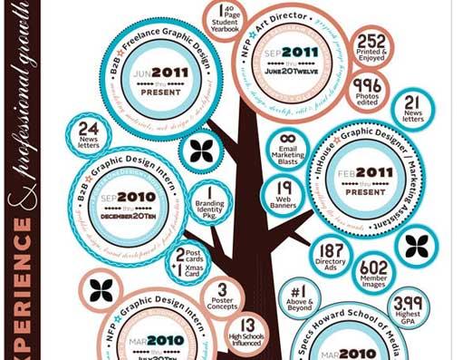 curriculum vitae estilo infografia