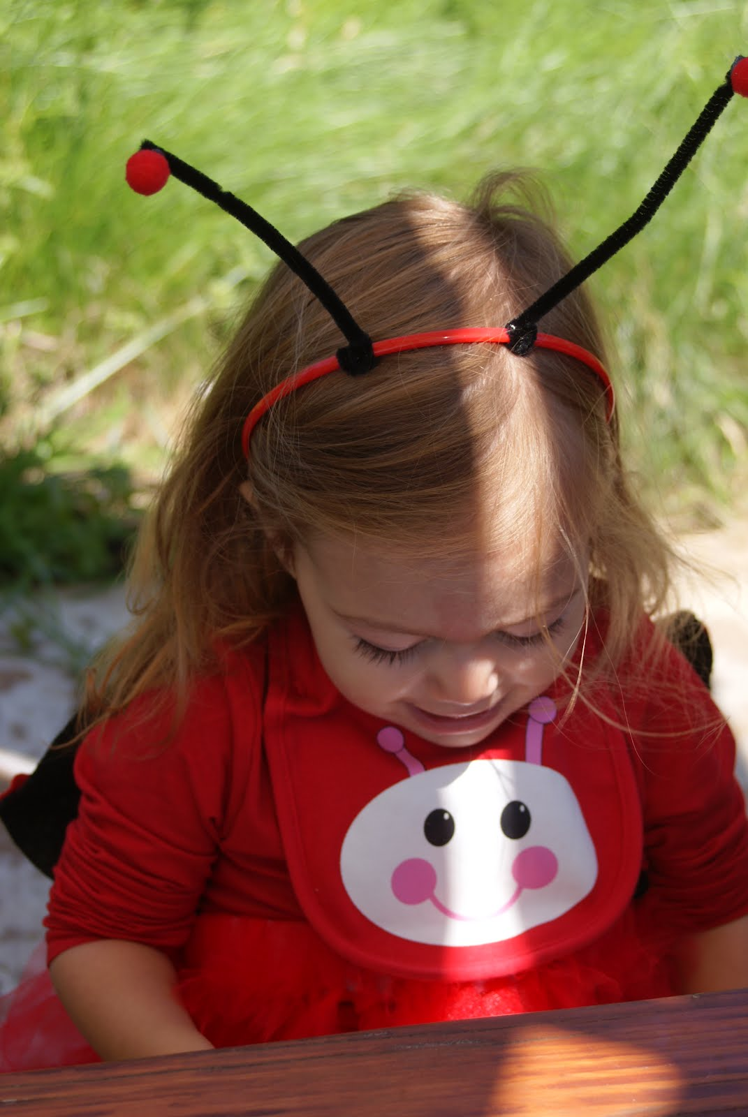 Project Caitlin S Life Blog Ladybug Girl