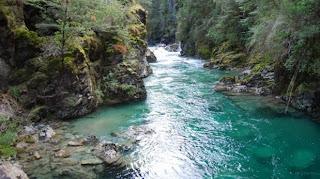 Resultado de imagen para Área Natural Protegida Río Azul Lago Escondido