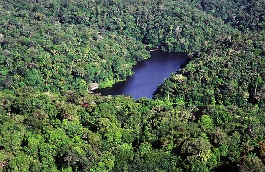 Conservação e Aproveitamento Econômico da Biodiversidade
