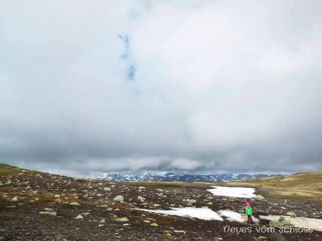 auf der Hardangervidda, Norwegen- neuesvomschloss