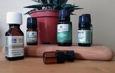 10+ Amazing Health Benefits Of Eucalyptus Oil