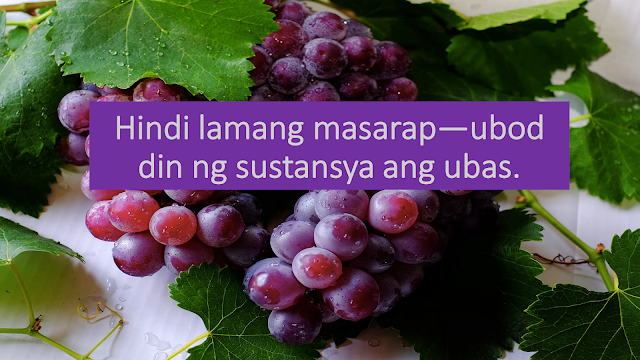 7 Reasons Why You Should Eat Grapes