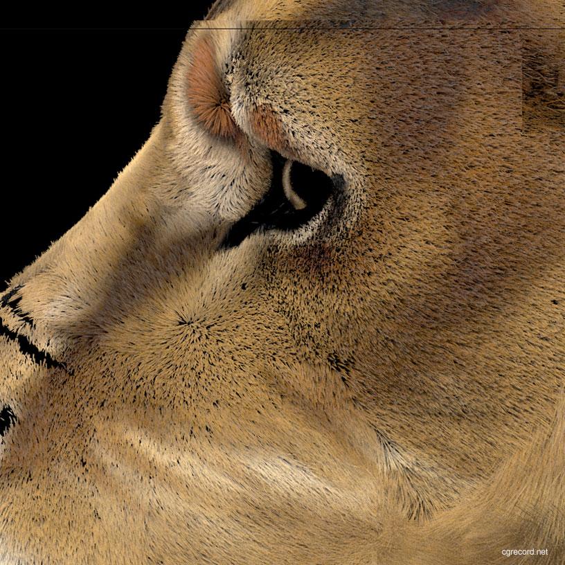 Creating Lion Fur using Ornatrix for 3ds Max | CG TUTORIAL