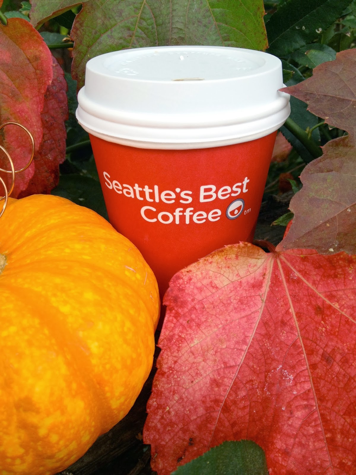 Jac O Lyn Murphy Fall Is Here Fresh Ground Coffee For
