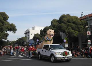 Service Dogs of America group, S. Santa Cruz Avenue, Los Gatos, California