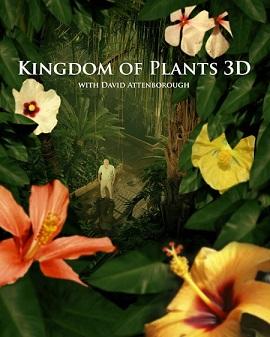 Xem Phim Vương Quốc Thực Vật - Kingdom of Plants