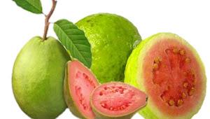 Manfaat buah Jambu biji Merah untuk Kecantikan wajah