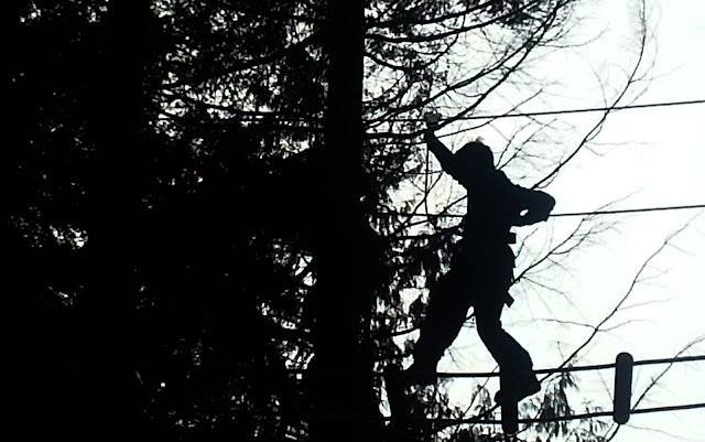 Boy walking across a bridge between two trees, in silhouette