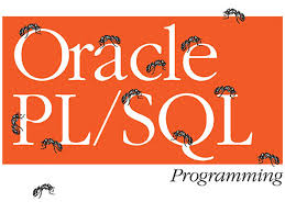 Difference between Stored Procedure and Function   Oracle