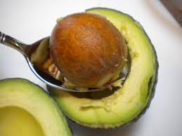 5 Benefits of Avocado Seeds For Health and Beauty - Healthy T1ps