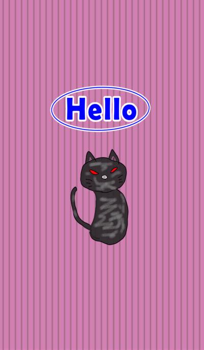 Hello Black Cat