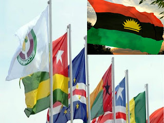 Image result for pictures of APC, Biafra and APGA flag