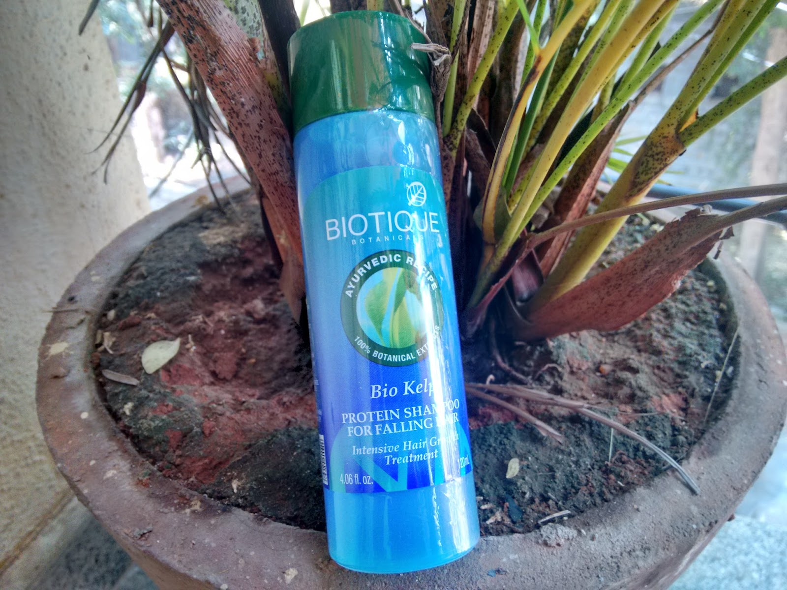 Biotique Bio Kelp Protein Shampoo For Falling Hair Intensive Hair