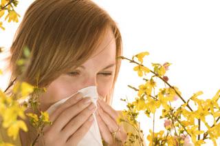 Thuốc và cách chữa trị viêm mũi dị ứng thời tiết