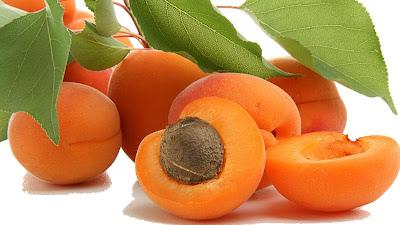 gambar biji aprikot