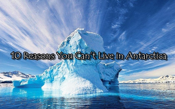 Top 10 Reasons You Can't Live in Antarctica Let's Know