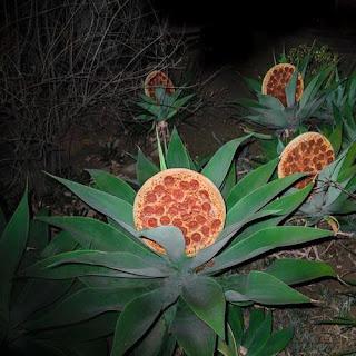 la planta que produce pizzas
