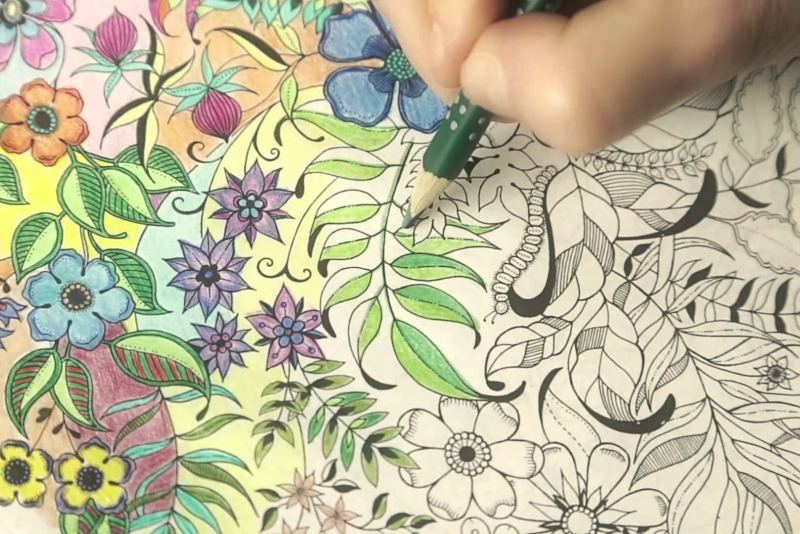 Libros para colorear con flores y plantas - Guia de jardin