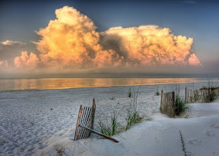 Caribe Condo, Vacation Home in Orange Beach Alabama
