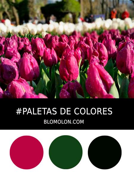 paletas_de_colores_mes_de_abril_4