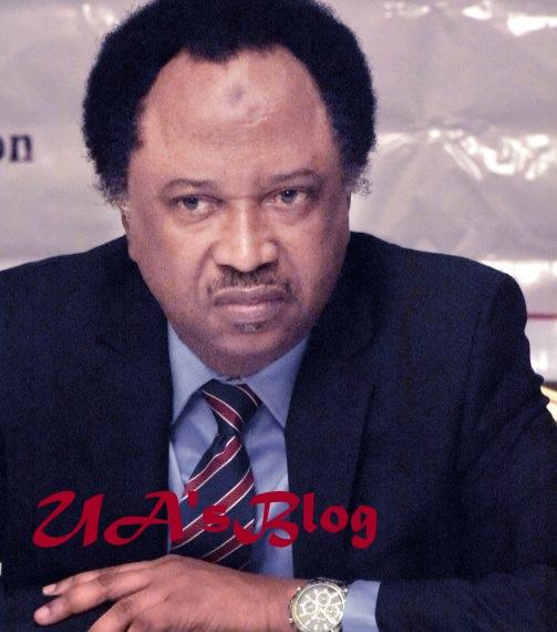 Ethnic Bigot Lesser Evil Than Divisive Religious One, Sani Tells El-Rufai