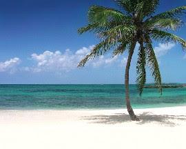 Beautiful Beaches of Nassau in the Bahamas - Popular Cruise destination.