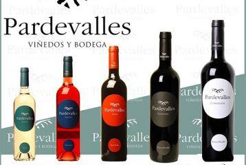 RUTAS DEL VINO: Viñedos y Bodega Pardevalles 3