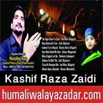 http://www.humaliwalayazadar.com/2016/10/kashif-raza-zaidi-nohay-2017.html