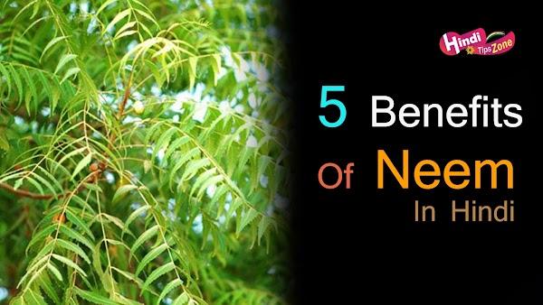 Top 5 Benifits Of Neem In Hindi | नीम के फायदे