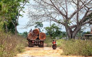 Caminhão carregado com toras trafega pela estrada Trans Iriri - Lilo Clareto/ISA/Direitos reservados