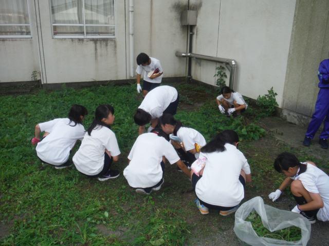 愛川町立愛川東中学校のブログ: ...