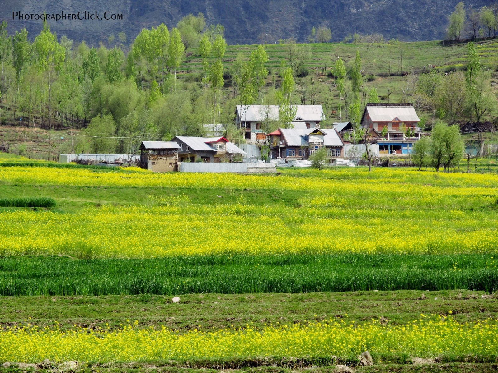 Beautiful village house in kashmir kashmir is the one of the