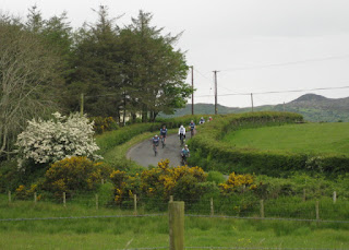Our cycling group descending a hill flanked by stone walls and blooming hawthorne and gorse, near Ballymagany Lough, County Donegal, Ireland