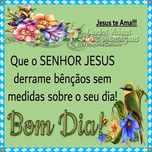 Que o SENHOR JESUS  derrame bênçãos sem  medidas sobre o seu dia!  Bom Dia!