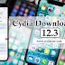 Cydia Download iOS 12.3 Jailbreak Updates