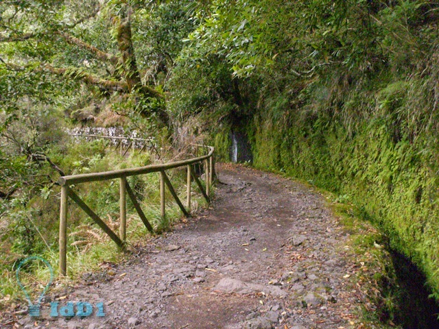 levada do risco pr 6.1 - 17 - idd1