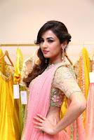 Sonal Chauhan New Stills
