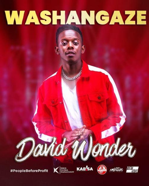 David Wonder - Washangaze